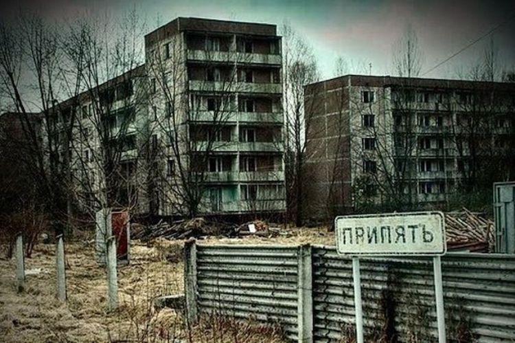 chernobylsy1