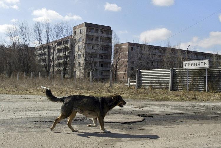 Чернобыль - катастрофа продолжится?