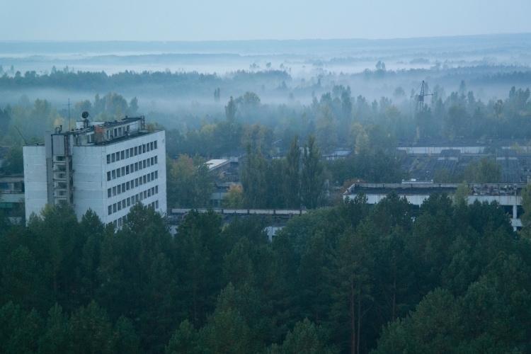 В Чернобыле нашли зомби фото