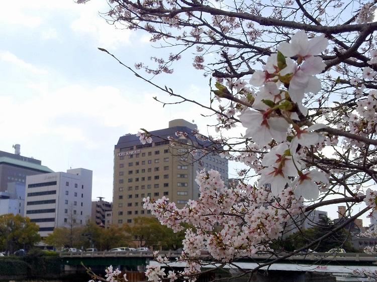 hiroshima_hotels5
