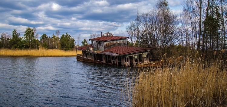 chernobyl_catfish1