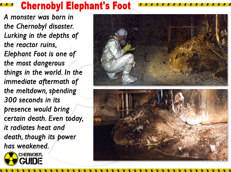 chernobyl elephant's foot photo