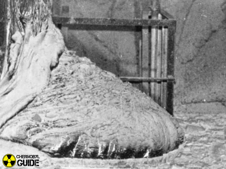 chernobyl pictures elephant foot
