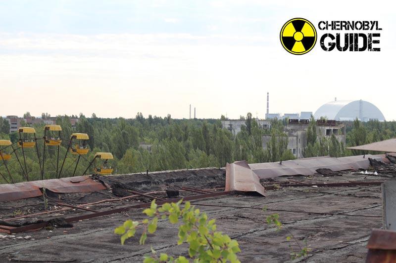 chernobyl foto malformazioni