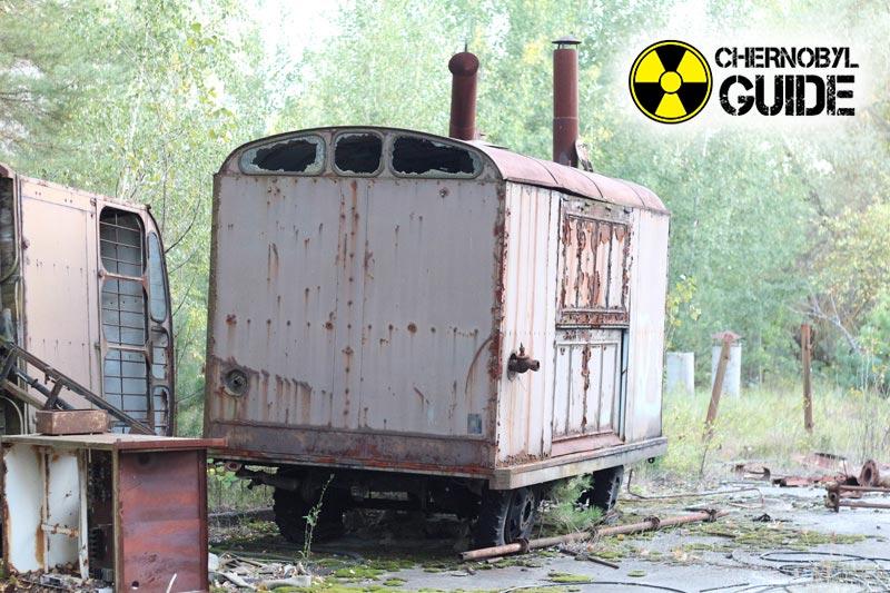 chernobyl mutazioni genetiche foto