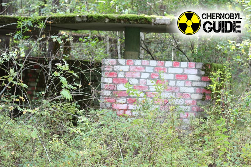 desastre de chernobyl imagenes