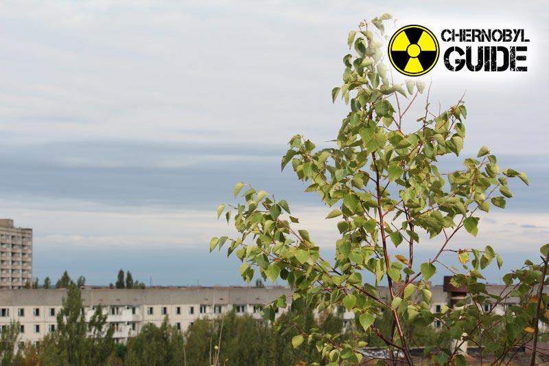 Immagini di Chernobyl in Ucraina dopo l'esplosione di 4 centrali nucleari