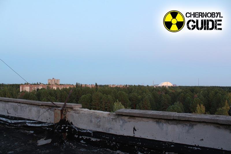 foto nocciolo chernobyl